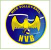 NVB_logo